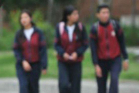 11 juni colegio el cerro