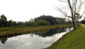 rio-bogota