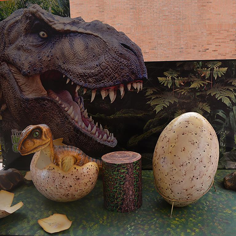 Exposicion De Dinosaurios Gigantes En La Casona De Zipaquira El Periodico De Chia Además, los paleontólogos también descubrieron fósiles del cráneo de otro titanosaurio, ya conocido. exposicion de dinosaurios gigantes en